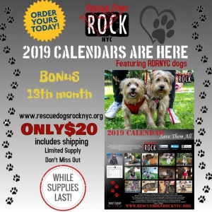 Rescue dogs rock 2019 calendar